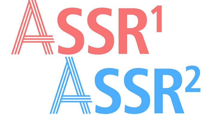 ASSR.png